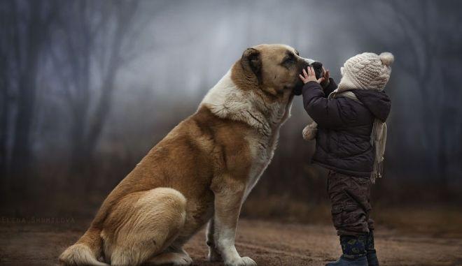 Μαγικές φωτογραφίες: Η αγάπη των παιδιών για τα ζώα