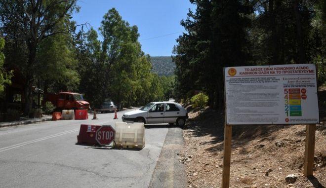 Απαγόρευση κυκλοφορίας στα δάση λόγω του κινδύνου φωτιάς