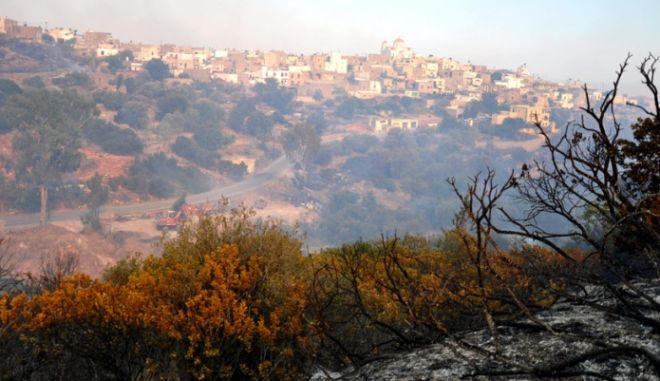 Φωτιά στη Χίο: Προσπάθειες να ελεγχθεί πριν βραδιάσει