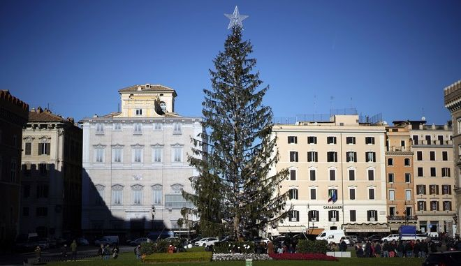 The Rome's official Christmas tree stands in Rome's central Piazza Venezia Square, Friday, Dec. 22, 2017.   (AP Photo/Andrew Medichini)