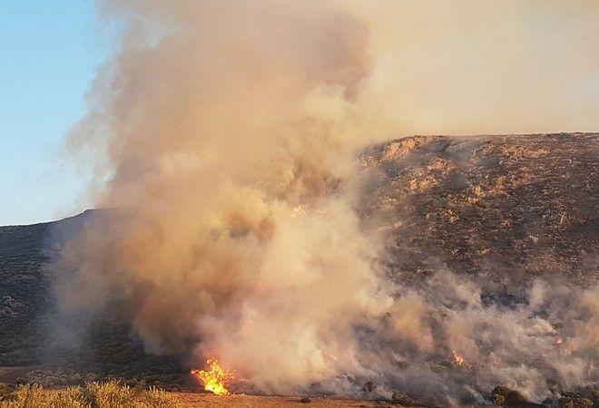 Πυρκαγιά στα Καλύβια: Κλειστή η παραλιακή στο ύψος της Σαρωνίδας