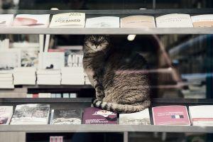 Τα πιο κουλ βιβλιοπωλεία της Αθήνας
