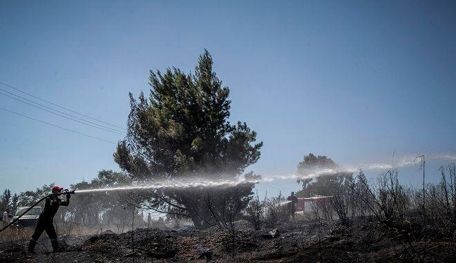 Πυρκαγιά στο άλσος Συγγρού στο Μαρούσι