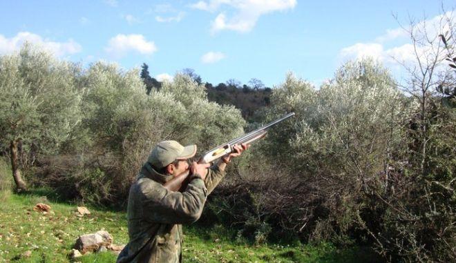 Απαγόρευση του κυνηγιού σε όλη τη χώρα με απόφαση του ΣτΕ