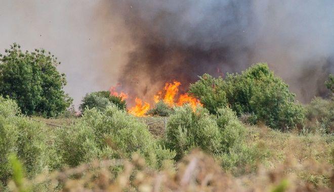 Πυρκαγιά στην περιοχή μεταξύ χωριών Φλάμπουρα και Σαμψούντα στην Πρέβεζα την Τετάρτη 30 Αυγούστου 2017. Από την φωτιά κάηκε διώροφο κτήριο παλιάς βιοτεχνίας ενώ απειλήθηκαν και θερμοκήπια. (EUROKINISSI/ΓΙΩΡΓΟΣ ΕΥΣΤΑΘΙΟΥ)