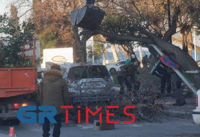 Κακοκαιρία Μήδεια: Δέντρο έπεσε σε φανάρι στη Θεσσαλονίκη