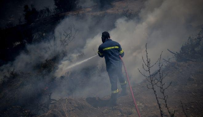 Στιγμιότυπο από την πυρκαγιά στην Εύβοια