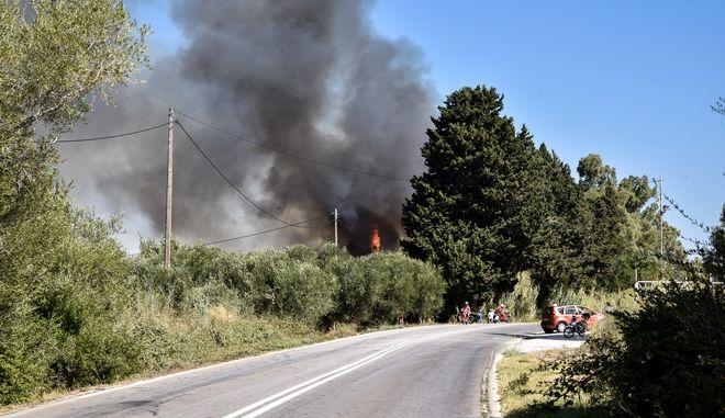 Φωτιά κοντά στον αρχαιολογικό χώρο της Νικόπολης στην Πρέβεζα
