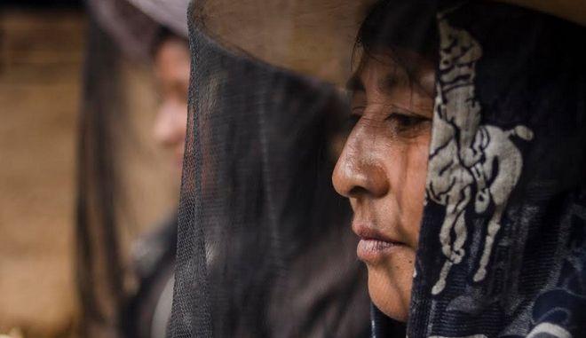 Στη Γουατεμάλα οι μέλισσες 'τα έβαλαν' με την πατριαρχία