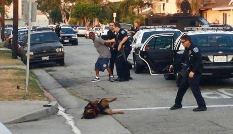 Απίστευτο σοκ! Αστυνομικός πυροβολεί εν ψυχρώ και σκοτώνει σκύλο (Προσοχή, πολύ σκληρό βίντεο)