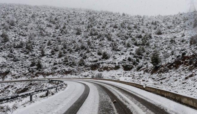 Χιονόπτωση στο όρος Γέροντας της Εύβοιας