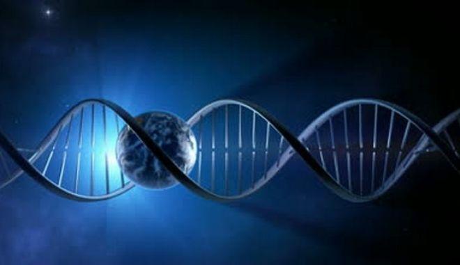 Πόσο ζυγίζει το DNA όλης της γης;