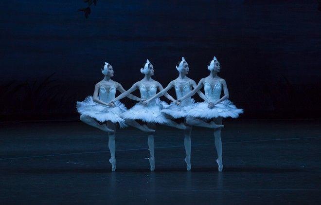 'Λίμνη των Κύκνων': Στο μαγικό κόσμο του παραμυθιού με 52 χορευτές από την Κίνα