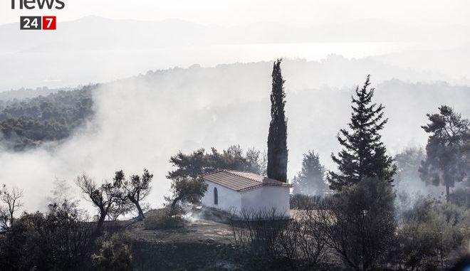 Στάχτη και αποκαΐδια ο Κάλαμος: Η εικόνα μετά τη φωτιά kalamos10c