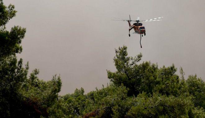Ελικόπτερο επιχειρεί στην κατάσβεση της μεγάλης πυρκαγιάς που ξέσπασε τη νύχτα στην Εύβοια σε δασική περιοχή στην θέση Αργιλίτσα του δήμου Διρφύων Μεσσαπείων, την Τρίτη 13 Αυγούστου 2019.