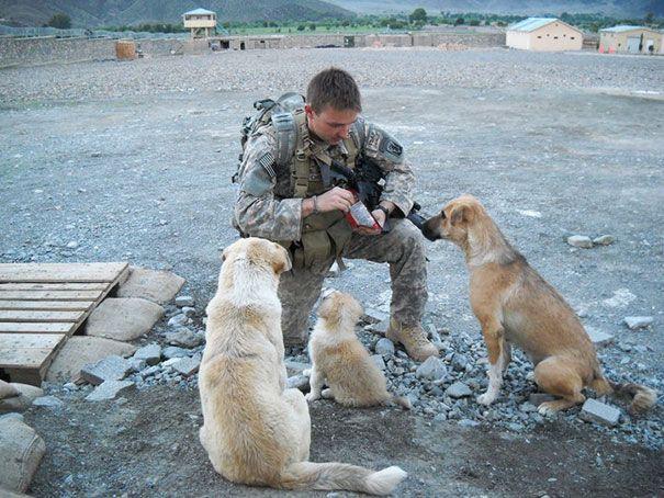 Καλύτεροι φίλοι και στον πόλεμο