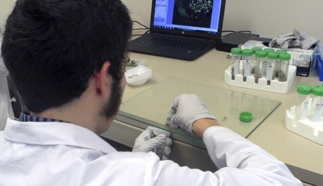 Σε πέντε Έλληνες επιστήμονες της διασποράς τα βραβεία Μποδοσάκη 2017