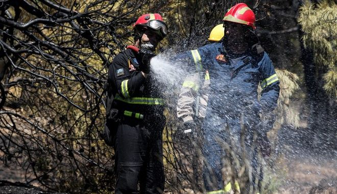 Πυρκαγιά σε δασική έκταση πίσω από το γήπεδο της τοπικής ομάδας του Χαϊδαρίου το μεσημέρι της Τρίτης 20 Αυγούστου 2019. (EUROKINISSI/ΓΙΑΝΝΗΣ ΠΑΝΑΓΟΠΟΥΛΟΣ)