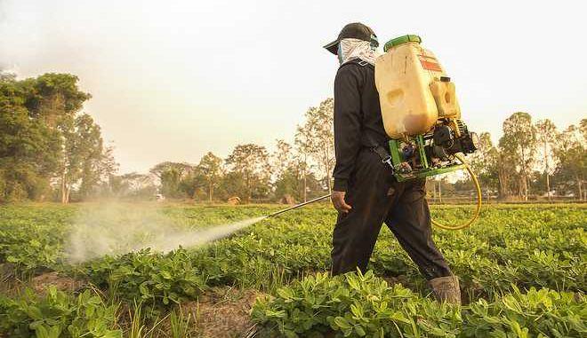 'Σαρώνουν' τις καλλιέργειες παράνομα φυτοφάρμακα από Βουλγαρία και Τουρκία