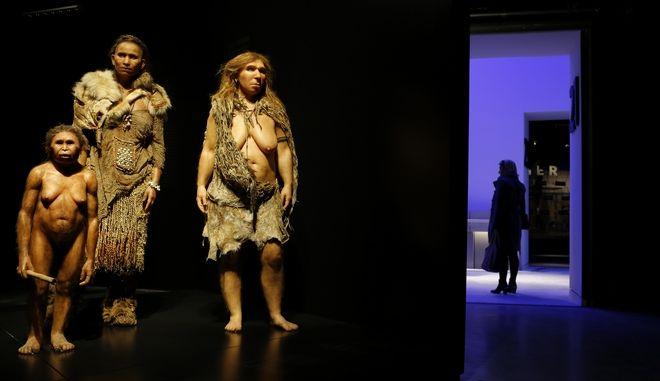 Ομοιώματα Homo Sapiens και Neanderthal στο Μουσείο Επίστημης και Ανθρωπολογίας στη Lyon