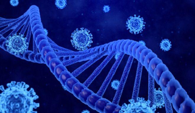 3D απεικόνιση γονιδίων και κορονοϊού