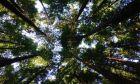 Πώς με μια απλή πράξη μπορείς να συμβάλεις στην προστασία του περιβάλλοντος