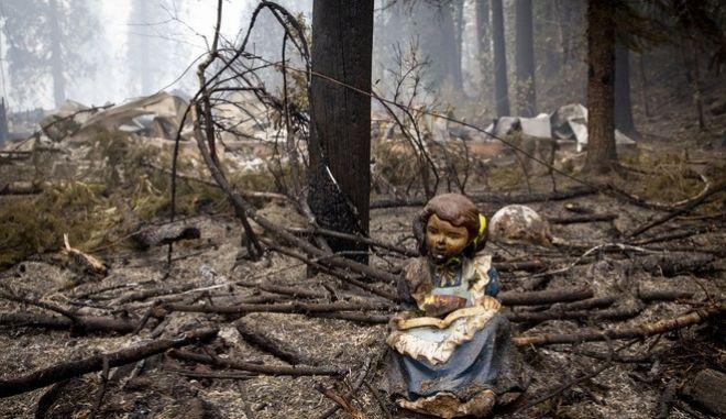 Χιλιάδες στρέμματα έχουν γίνει παρανάλωμα του πυρός στο Όρεγκον