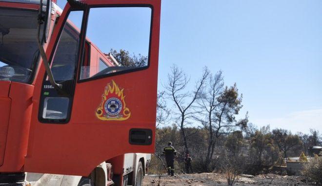 Νέες πυρκαγιές σε Κερατέα και Ανθούσα