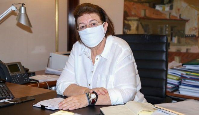 H υπουργός Πολίτισμού, Λίνα Μενδώνη