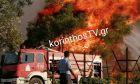 Φωτιά στο Καλέντζι Κορινθίας: Δύσκολη νύχτα - Ανεξέλεγκτο το μέτωπο