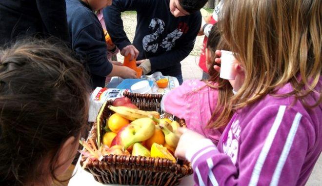 Δωρεάν φρούτα εξ' Ευρώπης σε όλα τα σχολεία, κόστους 3.1 εκατ. ευρώ