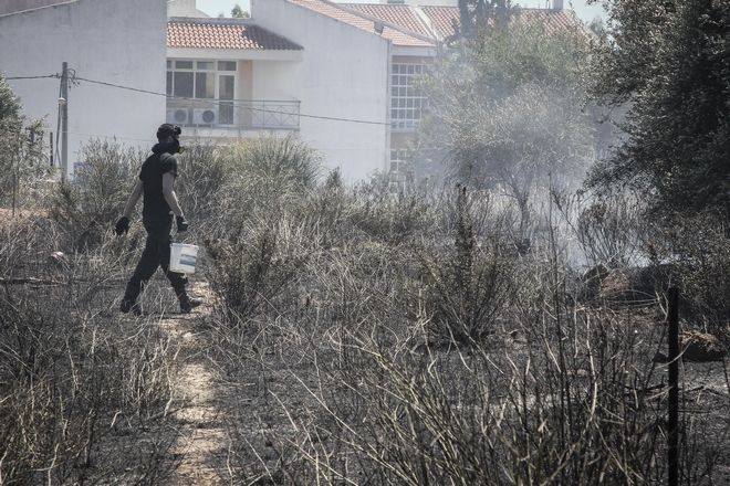 Πυρκαγιά στο άλσος Συγγρού στο Μαρούσι, το μεσημέρι της Παρασκευής 1 Ιουνίου 2018. Στο σημείο έσπευσαν 11 οχήματα της πυροσβεστικής με 25 πυροσβέστες, και 3 αεροσκάφη. (EUROKINISSI/ΣΩΤΗΡΗΣ ΔΗΜΗΤΡΟΠΟΥΛΟΣ)
