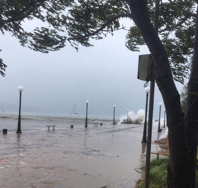 Κλειστός ο δρόμος Γιάλοβα - Πύλος λόγω πτώσης δέντρων