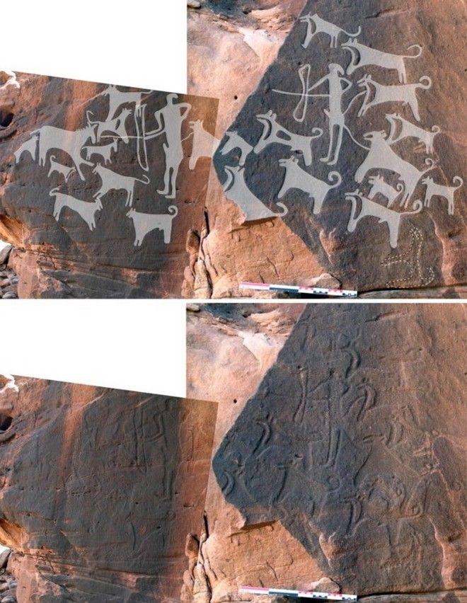 Σκυλιά δεμένα με λουρί σε βραχογραφίες 8.000 ετών!