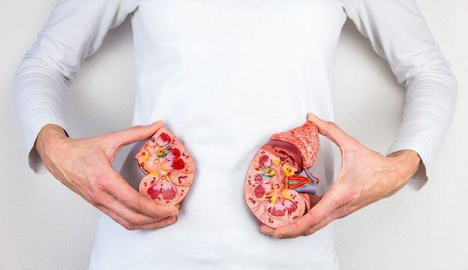 Μεταμόσχευση νεφρών