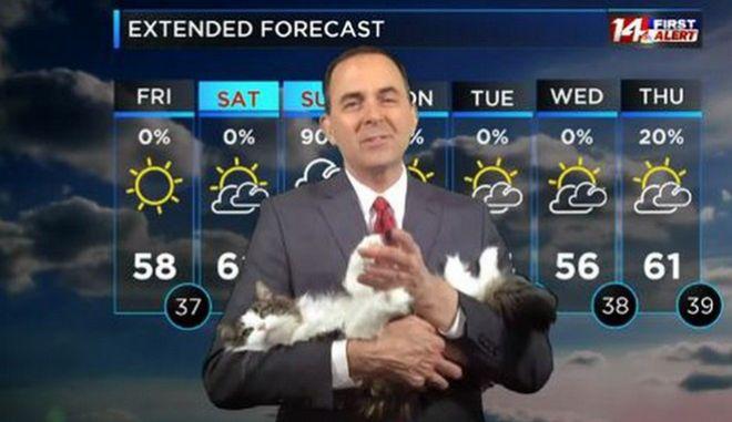 Μετεωρολόγος με τη γάτα του