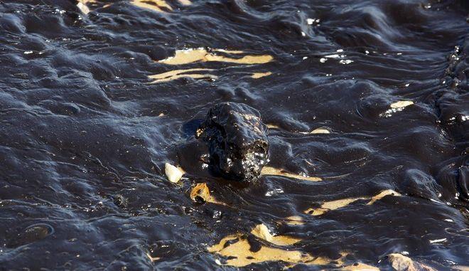 Στη Γλυφάδα έφθασε η ρύπανση. Πανστρατιά για τη σωτηρία του Σαρωνικού glyfada2