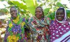 Το συνεταιρίζεσθαι άλλαξε τη ζωή των γυναικών στη Ζανζιβάρη