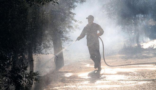 Υπό μερικό έλεγχο τέθηκε η φωτιά στη Νέα Μάκρη