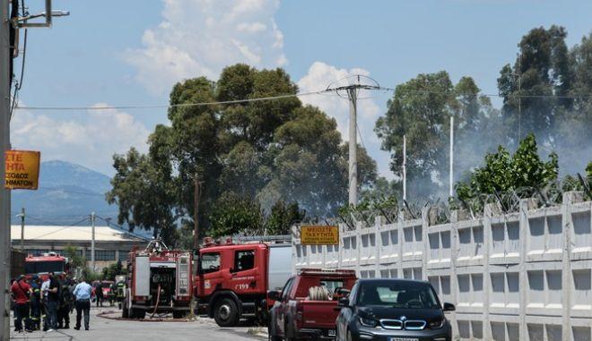 Στιγμιότυπο από το σημείο της φωτιάς στον Ασπρόπυργο