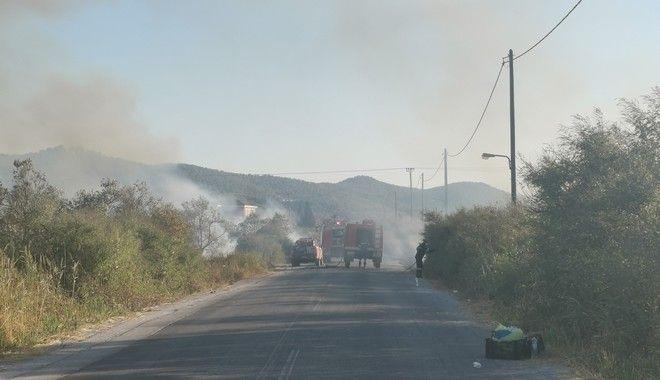 Νεα φωτιά στην Παναγιουδα στη Λέσβο
