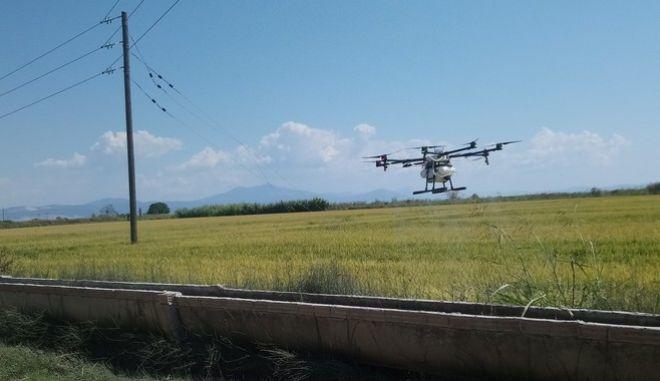 Drones ενάντια στα κουνούπια