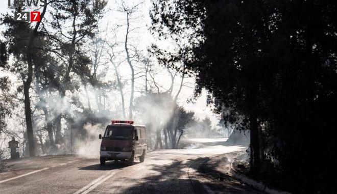 Στάχτη και αποκαΐδια ο Κάλαμος: Η εικόνα μετά τη φωτιά kalamos12c