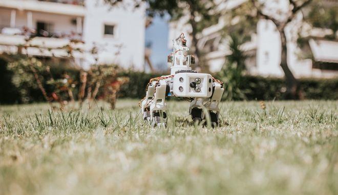 ΚΥΤΙΟΝ: Γεωργία Ακριβείας με τη βοήθεια ενός ρομπότ