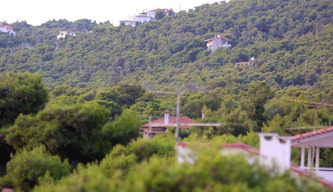 Σπίτια μέσα σε δάσος στην Αν. Αττική