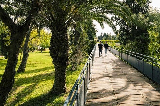 Κυπριακά Πανεπιστήμια: Προπτυχιακά και Μεταπτυχιακά Προγράμματα