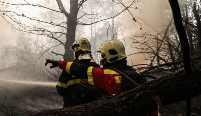 Το πυροσβεστικό σώμα υπολογίζει στα πλάνα του τις τοπικές εθελοντικές ομάδες πυρόσβεσης. Αν ωστόσο, -χτυπήστε ξύλο- συμβεί κάτι, οι εθελοντές δεν έχουν κάλυψη.