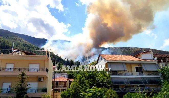 Εικόνα από την φωτιά στην Αταλάντη