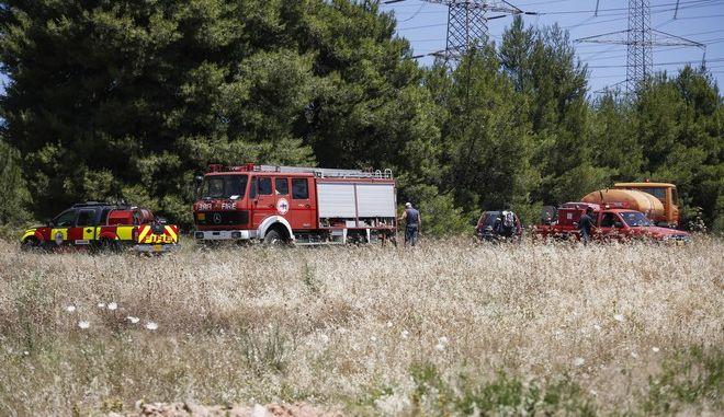 Κατάσβεση μεγάλης πυρκαγιάς στο Κρυονέρι Αττικής (EUROKINISSI / ΣΤΕΛΙΟΣ ΜΙΣΙΝΑΣ)