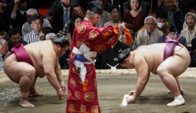 Τουρνουά Σούμο στην Ιαπωνία
